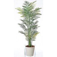 【送料無料】トロピカルアレカパーム (人工観葉植物) 高さ210cm 光触媒 (142A430)