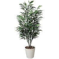 【送料無料】バンブーパーム (人工観葉植物) 高さ180cm 光触媒 (144A300)