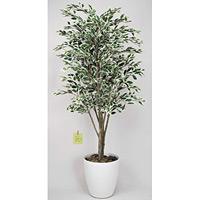 ベンジャミンツリー 斑入り (人工観葉植物) 高さ180cm 光触媒 (154B450)