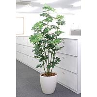 【送料無料】カポック (人工観葉植物) 高さ180cm 光触媒 (158A300)