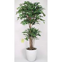 トロピカルベンジャミン (人工観葉植物) 高さ180cm 光触媒 (162B480)