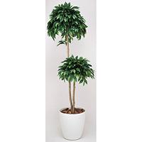 【送料無料】ベンジャミンダブル (人工観葉植物) 高さ180cm 光触媒 (169A350)