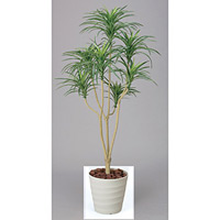 【送料無料】ユッカ (人工観葉植物) 高さ160cm 光触媒 (173A250)