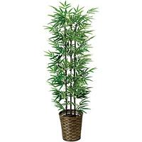 【送料無料】黒竹 (人工観葉植物) 高さ135cm 光触媒 (178A230)