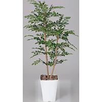 【送料無料】トネリコ (人工観葉植物) 高さ120cm 光触媒 (184B200)