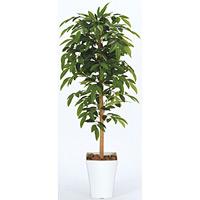 【送料無料】アルデシア (人工観葉植物) 高さ120cm 光触媒 (188A180)