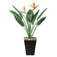 【送料無料】ストレチアS花付 (人工観葉植物) 高さ100cm 光触媒 (195B275)