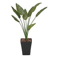 【送料無料】ストレチア (人工観葉植物) 高さ110cm 光触媒 (196A170)