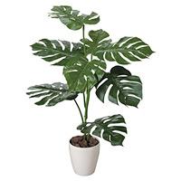 【送料無料】モンステラ (人工観葉植物) 高さ100cm 光触媒 (207C110)