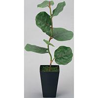 シーグレープ (人工観葉植物) 高さ55cm 光触媒 (218A50)