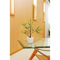 黒竹 (人工観葉植物) 高さ35cm 光触媒機能付 (238A30)