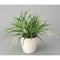 ドラセナミックス (人工観葉植物) 高さ38cm 光触媒機能付 (240A70)