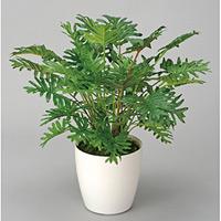 スプリットM (人工観葉植物) 高さ46cm 光触媒 (241A50)