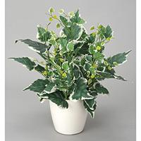 ホーランドアイビー (人工観葉植物) 高さ48cm 光触媒 (254A40)