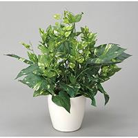 ポトス (人工観葉植物) 高さ48cm 光触媒 (255A40)