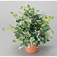 ホーランドアイビー (人工観葉植物) 高さ25cm 光触媒 (262A25)