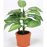 カントリーゼブラ (人工観葉植物) 高さ17cm 光触媒 (264A10)