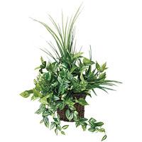 壁掛ナチュラルグラス (人工観葉植物) 高さ55cm 光触媒 (281A70)