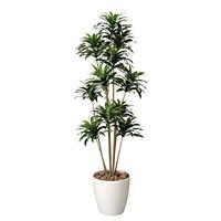 【送料無料】ドラセナコンパクタ1.6 屋外対応 光触媒加工無し (屋外用人工観葉植物) 高さ160cm (283A300)