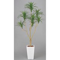 【送料無料】ユッカ (人工観葉植物) 高さ175cm 光触媒 (352A370)