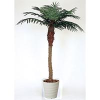 【送料無料】フェニックス (人工観葉植物) 高さ180cm 光触媒 (353A450)