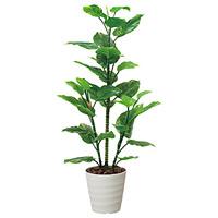 【送料無料】フレッシュポトス1.5 (人工観葉植物) 高さ150cm 光触媒機能付 (362B220)