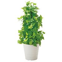 【送料無料】ポールライムポトス (人工観葉植物) 高さ82cm 光触媒機能付 (381B120)