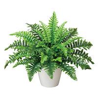 ボストンファン (人工観葉植物) 高さ35cm 光触媒 (387A50)