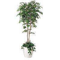 【送料無料】マウンッテンアッシュ 植栽付 (人工観葉植物) 高さ180cm 光触媒 (408A500)