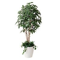 【送料無料】パキラ 植栽付 (人工観葉植物) 高さ180cm 光触媒 (412A450)