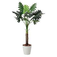 【送料無料】セローム (人工観葉植物) 高さ130cm 光触媒 (425A175)