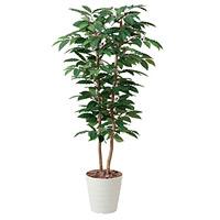 【送料無料】コーヒー (人工観葉植物) 高さ160cm 光触媒 (430A350)