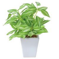 トラディスカンティアポット (人工観葉植物) 高さ19cm 光触媒 (435A20)
