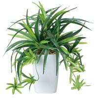 ドラセナ角ポット (人工観葉植物) 高さ30cm 光触媒 (438A60)