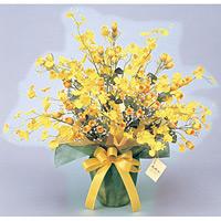 ゴールドストライク (造花) 高さ60cm 光触媒 (43A70)