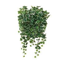 壁面緑化斑入アイビー (壁掛け/壁面用人工観葉植物) 高さ65cm 光触媒 (441A68)