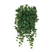壁面緑化アイビー (壁掛け/壁面用人工観葉植物) 高さ65cm 光触媒 (442A68)