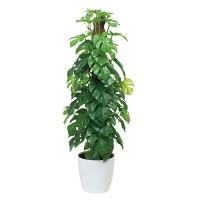 フレッシュポールスプリットM (人工観葉植物) 高さ60cm 光触媒機能付 (515A80)