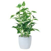 ミニポトスポット (人工観葉植物) 高さ27cm 光触媒 (523A25)