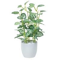 ミニピポエスタポット (人工観葉植物) 高さ27cm 光触媒 (525A25)
