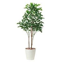 【送料無料】ローズウッドツリー1.8 屋外対応 光触媒加工無し (屋外用人工観葉植物) 高さ180cm (530A450)