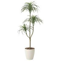 【送料無料】ユッカ (人工観葉植物) 高さ130cm 光触媒 (612A150)
