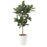 【送料無料】パンの木90 (人工観葉植物) 高さ90cm 光触媒 (613E130)
