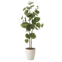 【送料無料】シーグレープ (人工観葉植物) 高さ125cm 光触媒 (615A180)