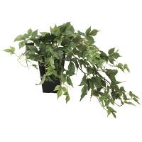 メイプルアイビー (人工観葉植物) 高さ35cm 光触媒機能付 (635A60)