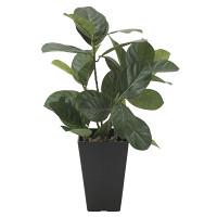 パンの木 (人工観葉植物) 高さ45cm 光触媒機能付 (636A50)