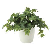 フレッシュアイビー (人工観葉植物) 高さ30cm 光触媒機能付 (639A50)