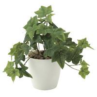 フレッシュアイビーS (人工観葉植物) 高さ25cm 光触媒 (640A35)