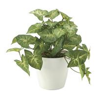 フレッシュカラージュームS (人工観葉植物) 高さ25cm 光触媒機能付 (644A35)