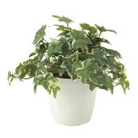 フレッシュ斑入りアイビー (人工観葉植物) 高さ30cm 光触媒機能付 (645A50)